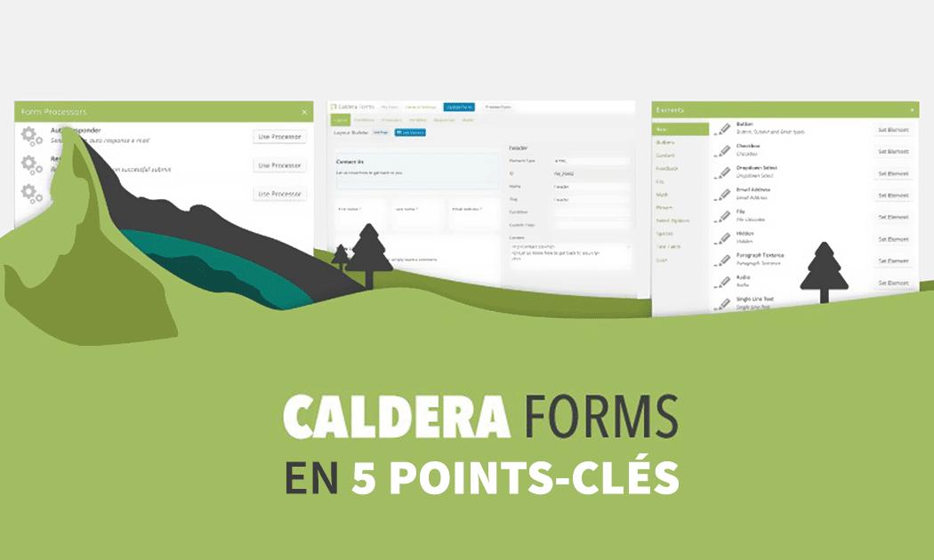 5 bonnes raisons de choisir Caldera Forms pour vos formulaires