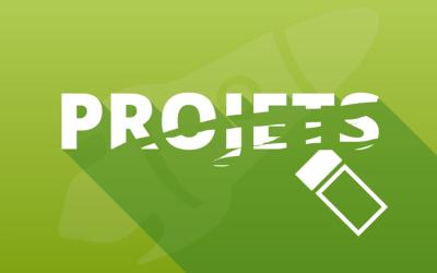 Comment renommer les projets Divi