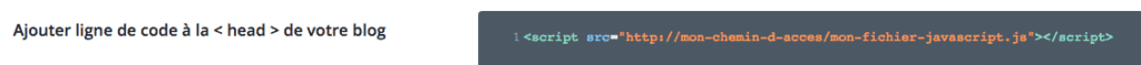 Appeler un fichier JavaScript externe dans les options du thème Divi