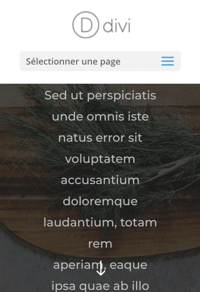 selectionner page divi