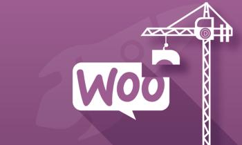Personnaliser les pages produits WooCommerce avec le Divi Builder