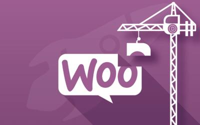 Personnaliser vos pages WooCommerce avec le Divi Builder