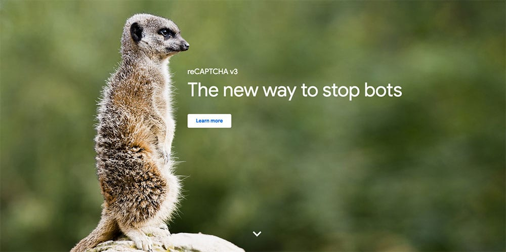 Le site de Google reCaptcha