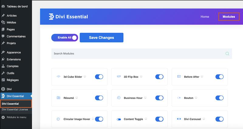 Selection des modules de Divi Essential