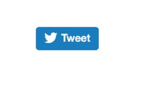 bouton twitter divi essential